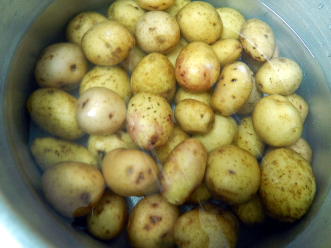 herb and spice potatoes