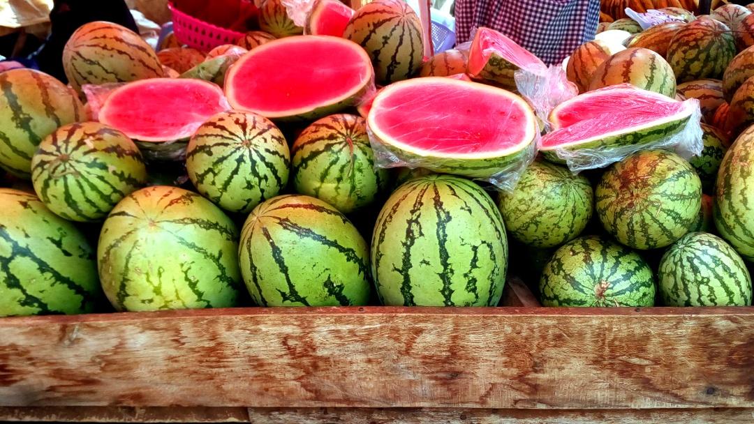 water melon salsa anyone?